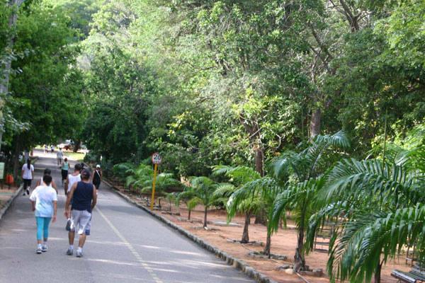 Bild 1 (Parque das Dunas Natal)